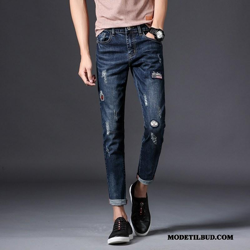 Herre Jeans Online Slim Fit Elastik Med Huller Bukser Trend Cyan Blå