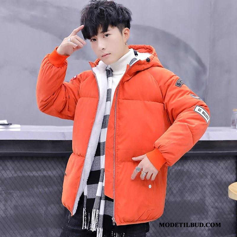 Herre Bomuld Jakke På Udsalg Trend Bomuldsjakke Vinter Ny Tykke Orange