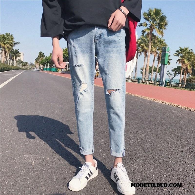 Herre Jeans Billige Bukser Cigaretbukser Slim Fit Trend Sommer Blå