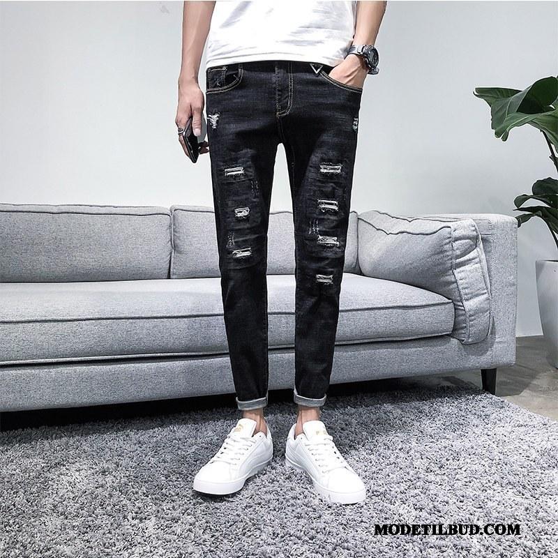 Herre Jeans Billige Med Huller Forår Slim Fit Ny Trend Sort
