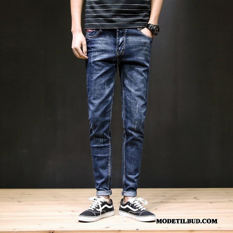 Herre Jeans Online Simple Forår Trend Lille Sektion Bukser Sort Blå