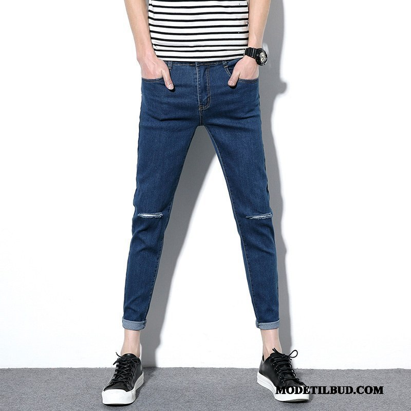 Herre Jeans Online Stretch Bukser Slim Fit Lille Sektion Cowboybukser Studerende Sort Blå