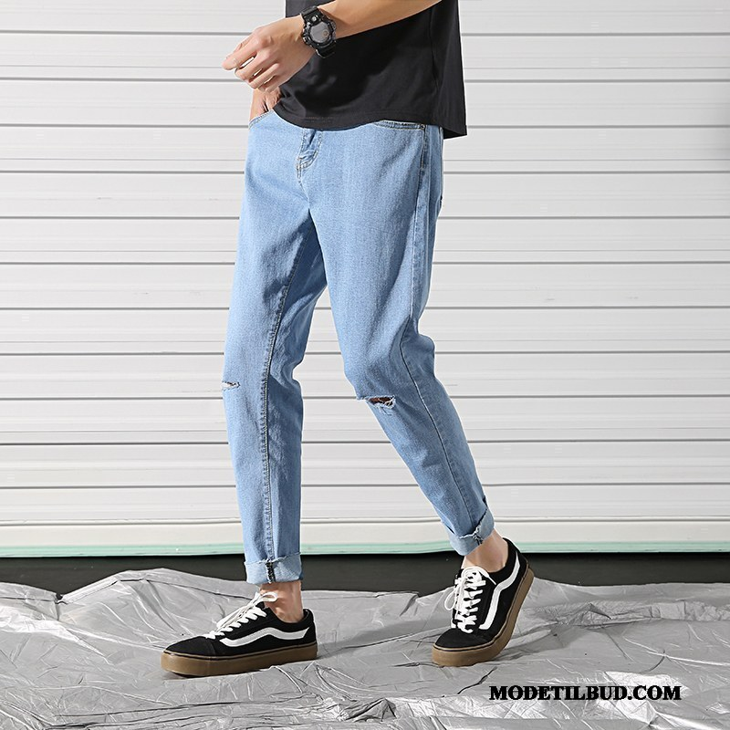 Herre Jeans Tilbud Cigaretbukser Trend Slim Fit Med Huller Trendy Blå