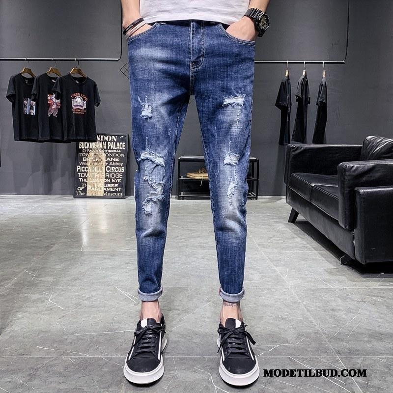 Herre Jeans Tilbud Med Huller Fritids Trend Cowboybukser Mænd Blå