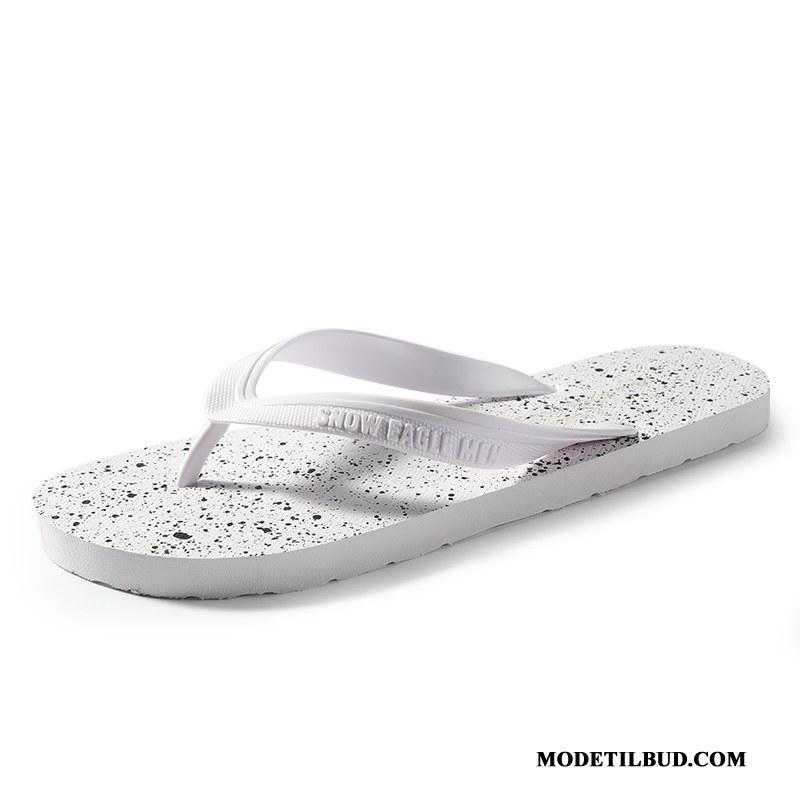 Herre Klipklappere Tilbud Skridsikre Mænd Mode Hjemmesko Sandaler Sand Hvid