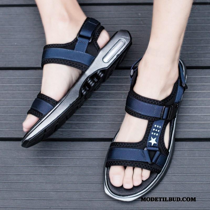 Herre Sandaler Rabat Mode Forår Bløde Såler Hjemmesko Køre Sand Blå