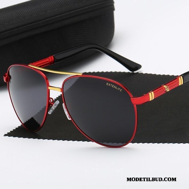 Herre Solbriller Billige Køre Mænd Trend Polarisator Rød Sort