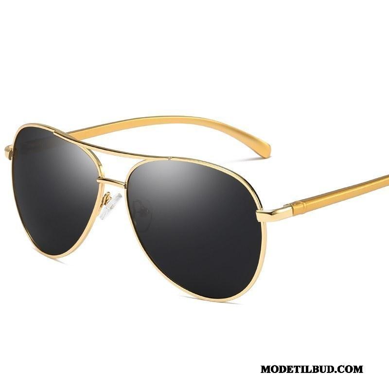 billige mode solbriller